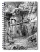 Hoodoos Bisti/de-na-zin Wilderness Monochrome Spiral Notebook