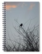 Hope Perched  Atop Spiral Notebook