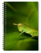 Hopper Spiral Notebook