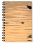 Hopping On Water Spiral Notebook