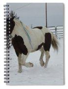 Horse 03 Spiral Notebook