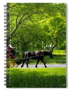 Horse And Carriage Central Park Spiral Notebook