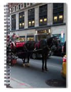 Horse And Carriage Nyc Spiral Notebook