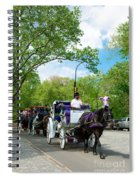 Horse And Carriages Central Park Spiral Notebook