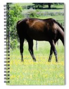 Horse And Flowers Spiral Notebook