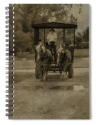 Horse Carriage Tour Spiral Notebook