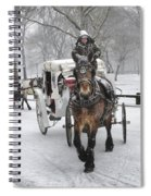 Horse Carriages In Snowy Park Spiral Notebook