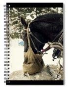 Horse Cinema Style Spiral Notebook