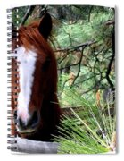 Horse Country Spiral Notebook
