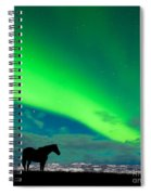 Horse Distant Snowy Peaks With Northern Lights Sky Spiral Notebook