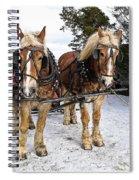 Horse Drawn Sleigh Spiral Notebook
