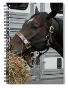 Horse Eating Hay Spiral Notebook