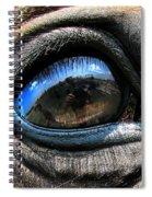Horse Eye Spiral Notebook