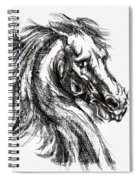 Horse Face Ink Sketch Drawing - Inventing A Horse Spiral Notebook
