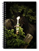 Horse Fence Spiral Notebook