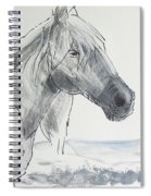Horse Head Drawing Spiral Notebook
