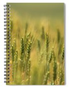 Horse Heaven Wheat Spiral Notebook