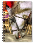 Horse In Cracow Spiral Notebook