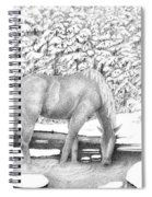 Horse In Snow Spiral Notebook