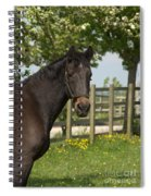 Horse In Spring Spiral Notebook