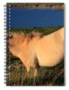 Horse In Wildflower Landscape Spiral Notebook