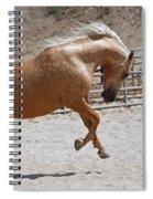 Horse Jumping Spiral Notebook