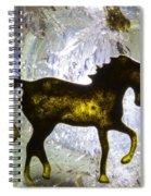 Horse On A Quartz Crystal Spiral Notebook