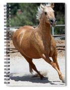 Horse On The Run Spiral Notebook