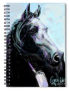 Horse Painted Black Spiral Notebook