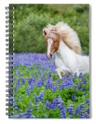 Horse Running By Lupines. Purebred Spiral Notebook