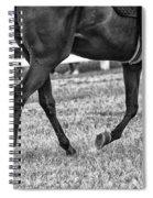 Horse Stepping Spiral Notebook