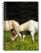 Horses Among Wildflowers Spiral Notebook