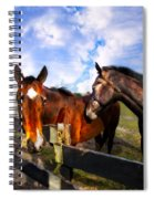 Horses At The Fence Spiral Notebook