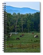 Horses Graze At Dawn Spiral Notebook