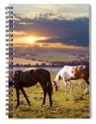 Horses Grazing At Sunset Spiral Notebook