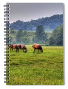 Horses In A Field 2 Spiral Notebook