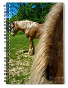 Horses In Meadow Spiral Notebook
