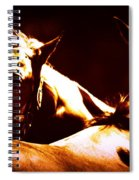 Horses In The Afternoon Spiral Notebook