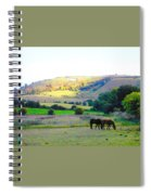 Horses In The English Countryside Spiral Notebook