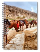 Horses Of Petra Spiral Notebook