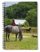 Horses On A Farm Spiral Notebook
