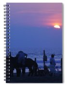 Horses On An Acapulco Beach Spiral Notebook