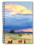 Horses On The Storm 2 Spiral Notebook