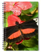 Hortense Butterfly Spiral Notebook