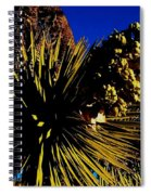 Hot 2014 Spiral Notebook