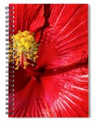 Hot Spiral Notebook