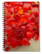 Hot Orange Beach Glass Spiral Notebook