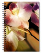 Hot Orchid Nights Spiral Notebook