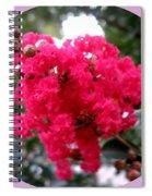 Hot Pink Crepe Myrtle Blossoms Spiral Notebook