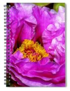 Hot-pink Flower Spiral Notebook
